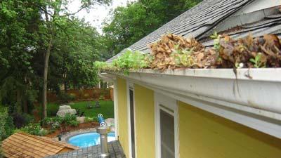 Limpieza y reparación de canalones y tejados